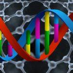 Precision DNA