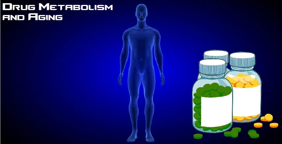Drug Metabolism and Aging