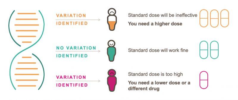 Illustration showing how pharmacogenetics indicates dosage for different people