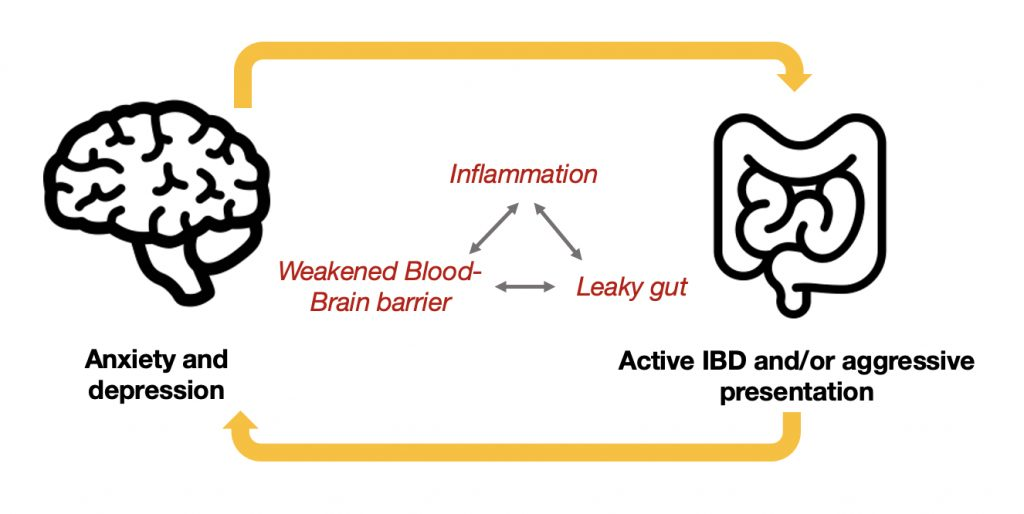 an illustration of the link between anxiety, depression and irritable bowel symptoms